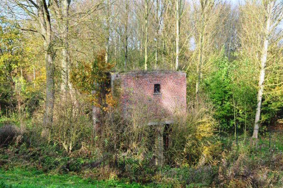 Hus i skog