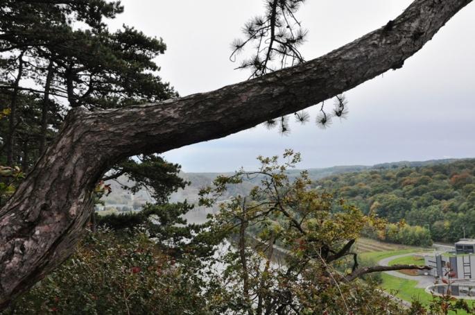 Utsikt över Meuse