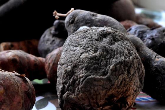 Rödbeta och potatis